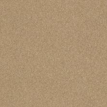 Shaw Floors Luxuriant Summer Suede 00760_E9253
