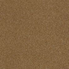 Shaw Floors Luxuriant Sienna 00762_E9253