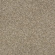Shaw Floors Simply The Best Because We Can II 15 Sea Shell 00100_E9259