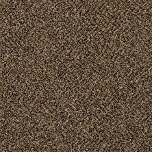Shaw Floors Because We Can II 15 Raw Sienna 00202_E9259