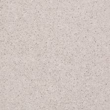 Shaw Floors Value Collections Full Court 15′ Net Halo 00100_E9270