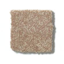 Shaw Floors Value Collections Full Court 15′ Net Tassel 00107_E9270