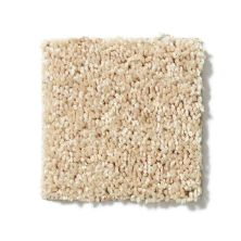 Shaw Floors Value Collections Full Court 15′ Net Crumpet 00203_E9270