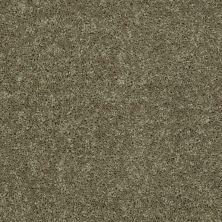 Shaw Floors Value Collections Full Court 15′ Net Aloe 00300_E9270
