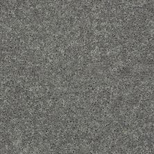 Shaw Floors Value Collections Full Court 15′ Net Ink Spot 00501_E9270