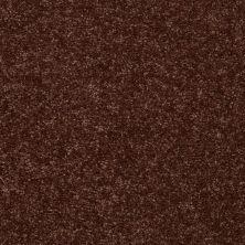 Shaw Floors Value Collections Full Court 15′ Net Flower Pot 00610_E9270