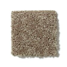 Shaw Floors Value Collections Full Court 15′ Net Hearth Stone 00700_E9270