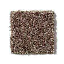 Shaw Floors Value Collections Full Court 15′ Net Cattail 00702_E9270