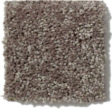 Shaw Floors Value Collections Full Court 15′ Net Driftwood 00703_E9270
