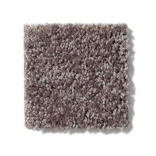 Shaw Floors Value Collections Full Court 15′ Net Molasses 00710_E9270