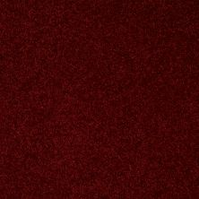 Shaw Floors Value Collections Full Court 15′ Net Red Wine 00801_E9270