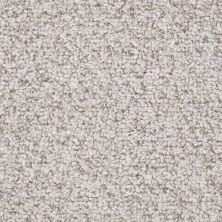 Shaw Floors Value Collections Pure Waters 12′ Net Timeless Neutral 00103_E9279