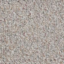 Shaw Floors Value Collections Pure Waters 12′ Net Tweed 00300_E9279