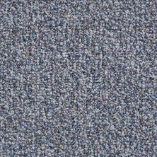 Shaw Floors Value Collections Pure Waters 12′ Net Sapphire Shimmer 00401_E9279