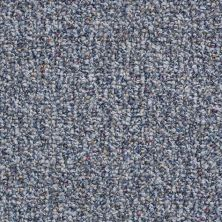 Shaw Floors Value Collections Pure Waters 15′ Net Sapphire Shimmer 00401_E9280