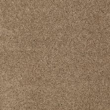 Shaw Floors Origins II Briar 00764_E9301