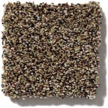 Shaw Floors Value Collections Because We Can I 12′ Net Raw Sienna 00202_E9312