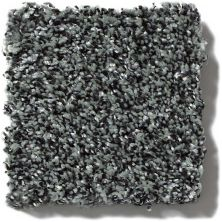 Shaw Floors Value Collections Because We Can I 12′ Net Smokey Shimmer 00502_E9312