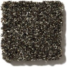 Shaw Floors Value Collections Because We Can I 12′ Net River Rock 00702_E9312