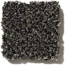 Shaw Floors Value Collections Because We Can II 12′ Net Iron Age 00503_E9314