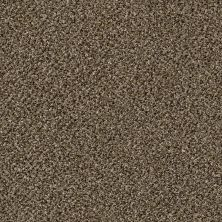Shaw Floors Value Collections Because We Can II 15′ Net Pinecone 00701_E9315