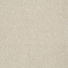 Shaw Floors Value Collections Platinum Texture 12′ Net Candlewick 00124_E9326