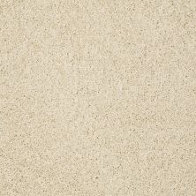 Shaw Floors Value Collections Gold Twist Net Chenille Soft 00110_E9329