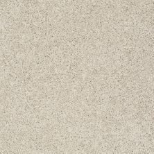 Shaw Floors Value Collections Gold Twist Net Candlewick 00124_E9329