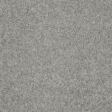 Shaw Floors Value Collections Gold Twist Net Elephant Gray 00534_E9329