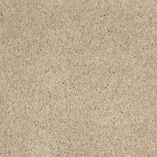 Shaw Floors Value Collections Platinum Twist Net Travertine 00702_E9330