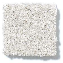 Shaw Floors Value Collections Gold Texture Tonal Net Aspen Texture 00190_E9332