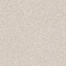 Shaw Floors Value Collections Platinum Texture Tonal Net Casa Blanca 00197_E9333