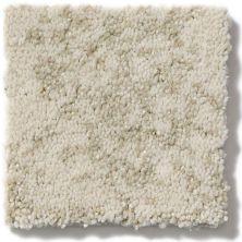 Shaw Floors Trend Setter Linen 00101_E9343