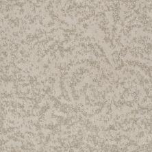 Shaw Floors Trend Setter Damask 00102_E9343
