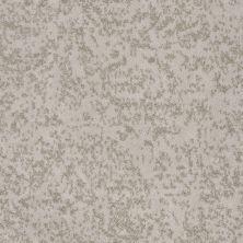 Shaw Floors Trend Setter Soft Echo 00103_E9343