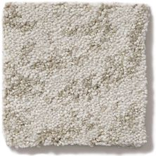 Shaw Floors Foundations Trend Setter Soft Echo 00103_E9343