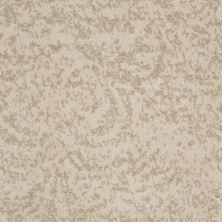 Shaw Floors Trend Setter Sun Bleached 00104_E9343