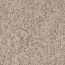 Shaw Floors Trend Setter Vintage Charm 00105_E9343