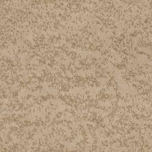 Shaw Floors Trend Setter Antiquity 00200_E9343
