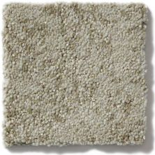 Shaw Floors Foundations Trend Setter Silver Sage 00300_E9343