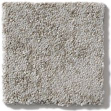 Shaw Floors Trend Setter Mist 00500_E9343