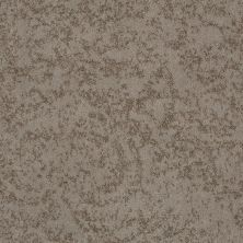 Shaw Floors Foundations Trend Setter Weathered Taupe 00700_E9343