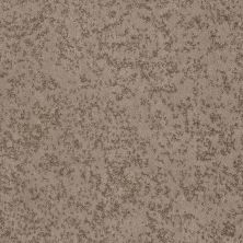 Shaw Floors Foundations Trend Setter Mink 00701_E9343