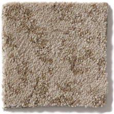Shaw Floors Trend Setter Mink 00701_E9343