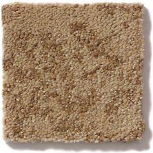 Shaw Floors Trend Setter Flax 00702_E9343