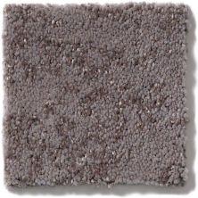 Shaw Floors Trend Setter Dusk 00900_E9343