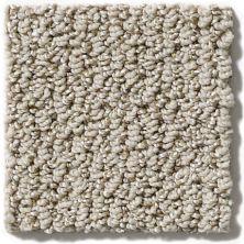 Shaw Floors Vibrant Dune 00101_E9345