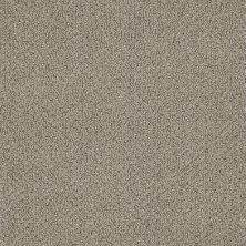 Shaw Floors Simply The Best Vibrant Taupe 00104_E9345