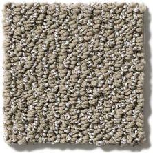 Shaw Floors Vibrant Taupe 00104_E9345