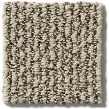 Shaw Floors Vibrant Sand 00106_E9345